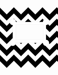black-white chevron