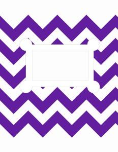 Purple Chevron Stripes