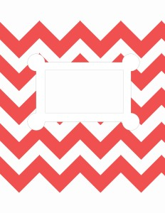 Red-Orange Chevron Stripes